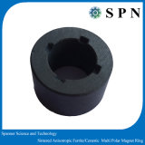 Anelli del magnete sinterizzati ferrito anisotropo per i motori
