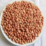 Prix de grain d'arachide du sac 25kg/Vacuum