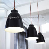Lâmpada contemporânea do pendente de 2014 formas/iluminação decorativa