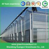 Casa verde da folha de vidro superior da estufa da fachada da placa de PC na venda
