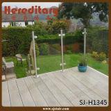 Railing нержавеющей стали в лестнице разделяет Railing палубы стеклянного Railing дешевый (SJ-H1163)
