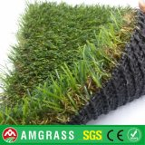 Grass e Artificial sintetici Turf con Coffee Color