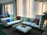 Exklusive moderne Eckkombinations-stellte Schnittgewebe-Sofa für Haupthotel-Wohnzimmer-Möbel ein