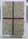 Painel de parede de mármore de imitação do granito da máquina da decoração da isolação de Tianyi