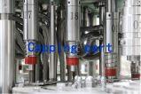 Máquina que capsula de relleno que se lava del agua de botella del animal doméstico