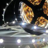Luz de tira flexible blanca caliente de 3528 LED SMD
