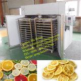 El secador industrial de la fruta, máquina vegetal del deshidratador, da fruto secadora