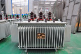 transformateur de distribution de la tension 10kv pour le bloc d'alimentation de Chine