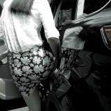 Accesorio lateral auto eléctrico Paso / estribo