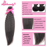マレーシアの高品質の加工されていないバージンのRemyのマレーシア人の毛