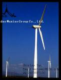 바람 터빈 발전기 시스템을%s 큰 바람 쉘