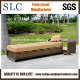 Loungers бассеина/стул салона/салон фаэтона ротанга (SC-B8914)