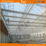 Buon Appearance Glass Multi-Span Greenhouse per Scientific Experiment