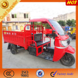 Sale를 위한 화물 Coverd Cars Trucks Rickshaw
