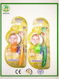 Grande scheda con il Toothbrush dei bambini della protezione
