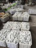 """Mattonelle di mosaico del pavimento di esagono del marmo bianco 3 di Carrara """""""