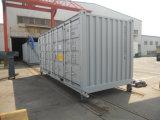 20 pieds ouvrent le conteneur latéral d'étage en acier