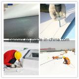 Membrane 100% imperméable à l'eau de PVC de matériaux de Vierge pour le toit de vert de résistance de fond