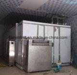 Machine fluidisée de la surgélation IQF pour le légume