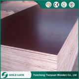 Contreplaqué en fibre de verre noir à 13 couches, contreplaqué mariné, contreplaqué
