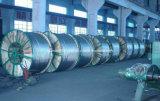 Alluminio di rinforzo acciaio Condutor/ACSR