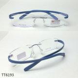 Optische Frames van de Manier van het titanium de Optische (TT 6193)