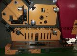 Máquina de perfuração do ferro Q35y-16 trabalhador hidráulico e de corte unida