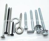 Aço inoxidável 304 Allen Screw / Hex Socket Cap Screw / Allen Bolt