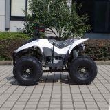Type attrayant 4 quarte meilleur marché ATV (A05) des gosses 50cc de charron