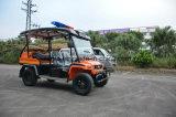安い電気自動車のトラックの電気手段のセダン