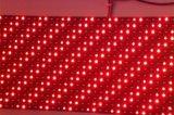 P10 옥외 단 하나 빨간 LED 모듈