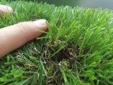 重金属のない裏庭の庭の装飾のための総合的な草