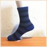 Calzini delle donne degli uomini di modo/calzini del bambino (KS002)