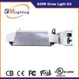 De gepatenteerde Hydrocultuur CMH groeit Licht met Dimmable Ballast 630W Met twee uiteinden voor Serre