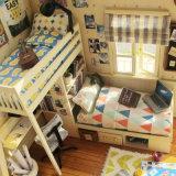 Casa de boneca de madeira pequena engraçada de Assemblling do brinquedo de DIY