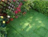 工場高品質の容易なインストール連結の床の人工的な草のタイル