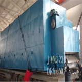 Essiccatore continuo del nastro trasportatore di serie di Dw