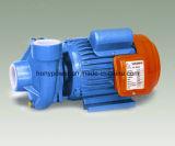 Px 시리즈 전기 원심 펌프