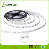 IP65 imprägniern SMD 5050 60 LED/flexibles RGBW LED Streifen-Licht des Messinstrument-5m/Roll mit Ferncontroller