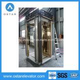 Piezas del elevador con la cabina hermosa de la decoración (OS41)