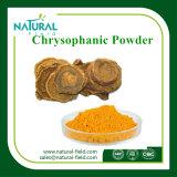 Polvo Chrysophanol el 98% del extracto del ruibarbo