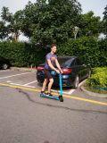 Scooter électrique de scooter de mobilité de roue de la boudineuse 10inch deux de vent
