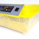 Ce complètement automatique transparent d'incubateur de 48 oeufs de Hhd le mini a reconnu