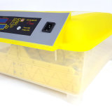 Hhd transparentes mini volles automatisches 48 Ei-Inkubator-Cer genehmigt
