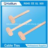 Placa de marcação de cabo de aço inoxidável com cabo de auto-bloqueio