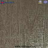 부엌 엘리베이터 벽을%s 스테인리스 돋을새김된 장