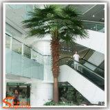 De Installaties van de tuin voor Ingemaakte Boom van de Ventilator van het Palmblad van de Verkoop de Kunstmatige