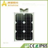 Nuovo Ce IP65 tutto di Manufacurer Suppling RoHS dell'oro 15W in una lampada solare del giardino degli indicatori luminosi di via