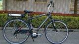 36V 250W Lithiumadultの電気自転車