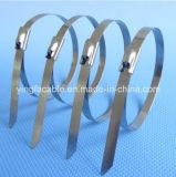 Edelstahl-Kabelbinder-Größen SS-316 unbeschichtete 4.6mmx201mm